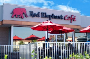 Support RHS PTA at Red Elephant Cafe