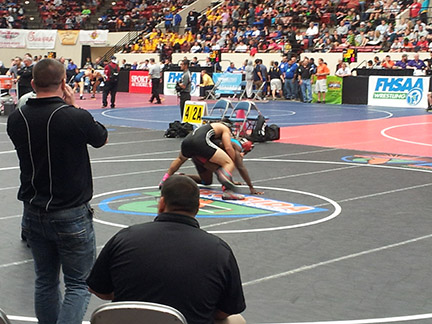 Wrestlers at the 2014 state meet.