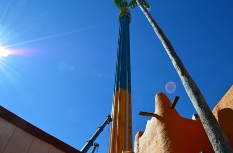 Falcon's Fury is located in the Timbuktu/Pantopia area of Busch Gardens Tampa. The tallest free standing drop tower in North American will take its first flight with park guests on May 1, 2014.