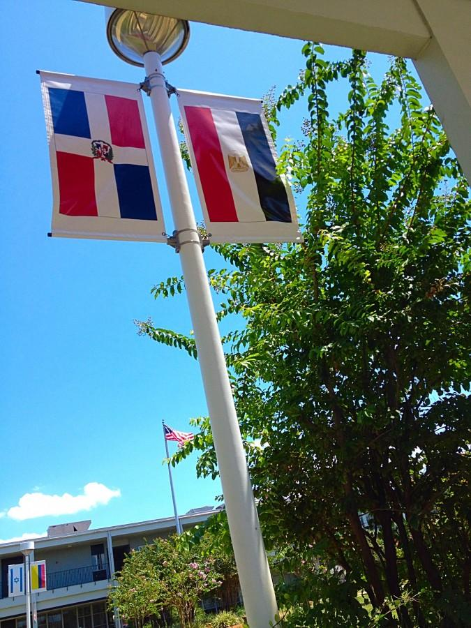 Flags in the Courtyardrhs