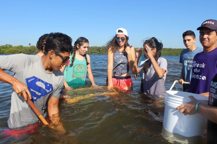 With his group around him, Lexx Pino ('17) reaches into the ocean to shovel out sand in search for invertebrates.