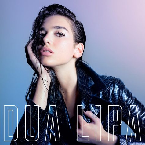 Dua Lipa Album Cover
