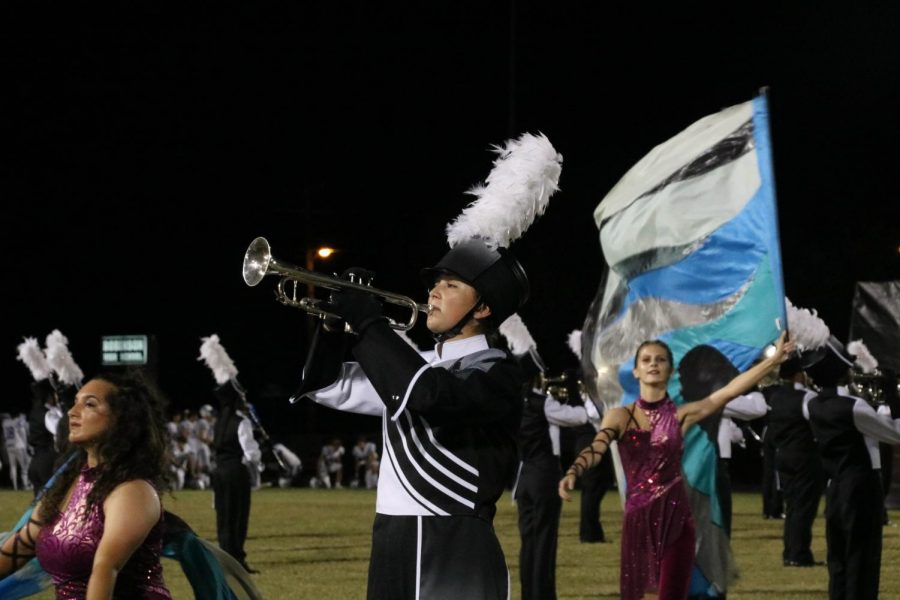 Robinson marching band takes first place overall