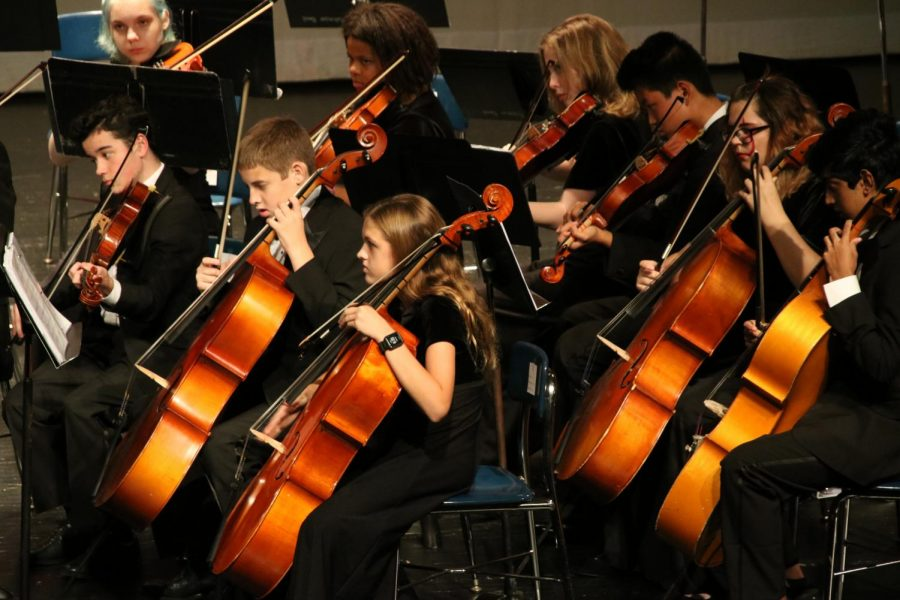 The cello section and viola section performs