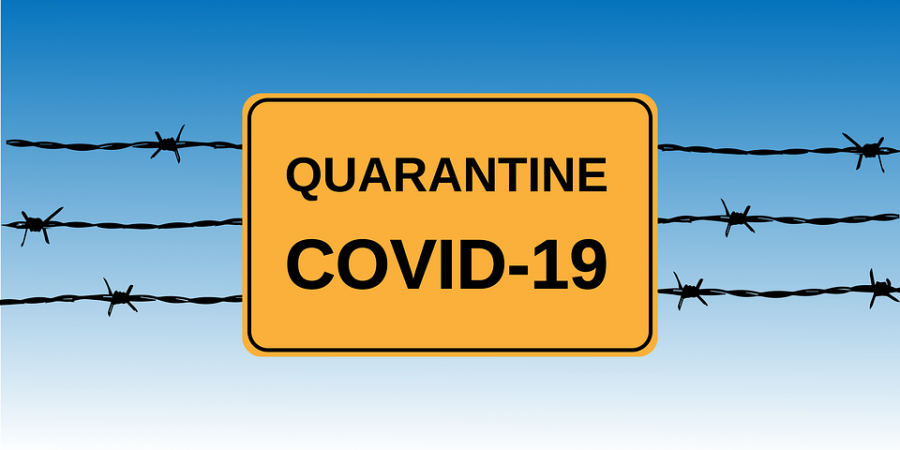 Quiz: Which quarantine song are you?