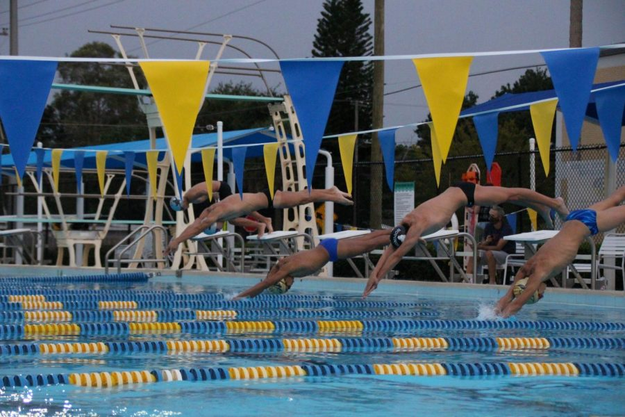 The Robinson boys swim team diving in the water
