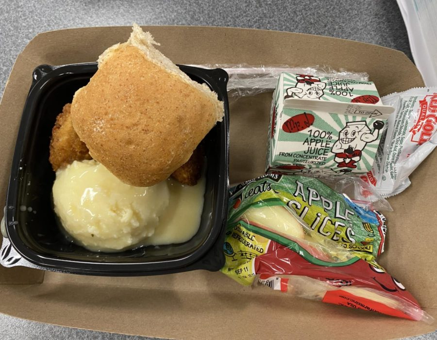 Example of school lunch. This balanced and delicious meal came with mash potato with gravy, chicken bites, a bread roll, apple slices and is even served with a juice box.